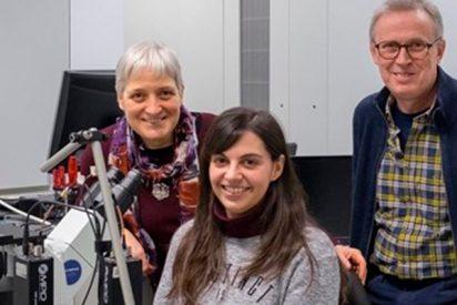 """Españoles identifican la """"concentración crítica"""" de la proteína que da comienzo al Alzhéimer"""