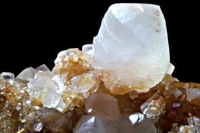 Vaterita: Descubren en plantas rastros de este raro mineral