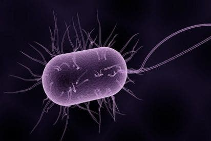 Salud: Software de aprendizaje automático predice la acción de una bacteria