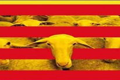 Tutorial: Si eres nacionalista catalán o vasco, echa un vistazo a esto y verás lo que es bueno