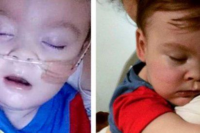 Desolador adiós al niño Alfie Evans; sus padres libraron una batalla legal para salvar su vida