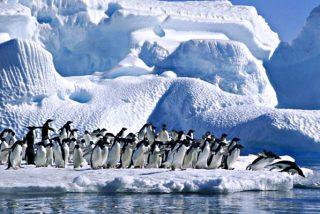 El fenómeno que sorprende a los científicos: Casquetes de hielo que crecen en periodos de calentamiento