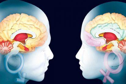 Longevidad: El elixir de juventud de nuestro cerebro