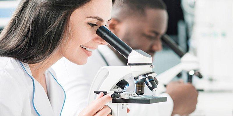 Científico descubre accidentalmente cómo crear embriones sin óvulos ni esperma