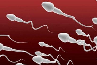 Un banco de esperma en China exige a sus donantes ser leales al Partido Comunista