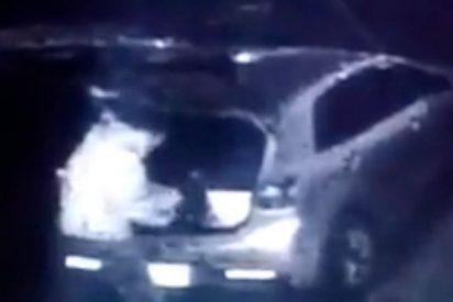 Así roba este ladrón en el interior de un coche