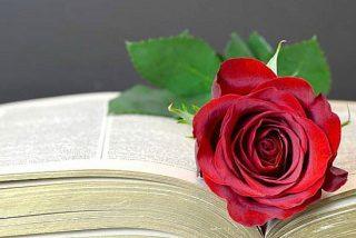 11 libros para regalar el Día de la Madre📖