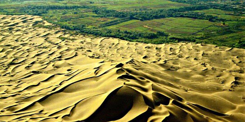 China exporta su Gran Muralla Verde a Africa para contener el desierto del Sáhara