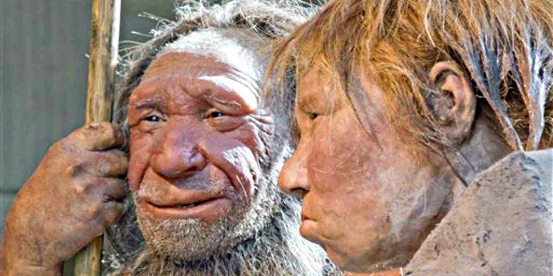 Narizotas: Una vida extrema fue que lo desarrolló grandes fosas nasales en los neandertales