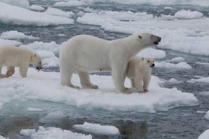 La inclinación terrestre altera el nivel del mar sin hielo en los polos