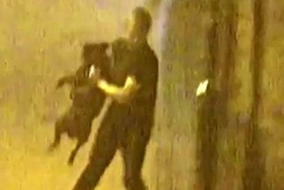 La muy fiera saca a pasear al calzonazos del novio como si fuera un perro