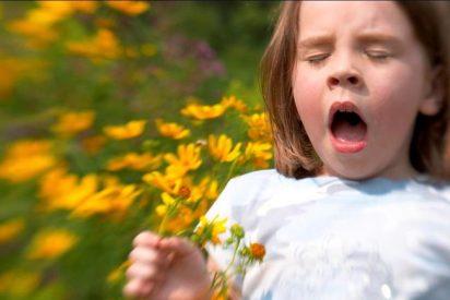 En primavera aumentan los casos de conjuntivitis alérgica por la polinización de gramíneas y olivos