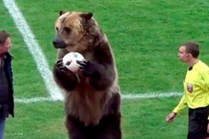 El saque de honor de este inusual invitado en el fútbol ruso deja perplejos a los internautas