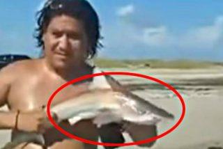 La venganza del tiburoncito contra el gilipollas que lo saca del agua