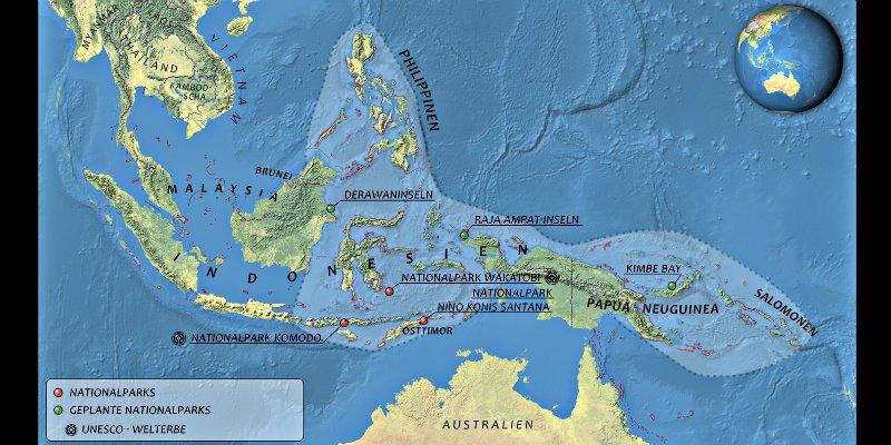 Triángulo de Coral: el 'centro de la biodiversidad del mundo' se deteriora a toda velocidad