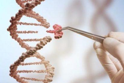Inmortalidad: ¿Deben de ser privados los datos que ocultan nuestros genes?