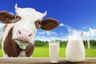 Tutorial: La economia es la leche y te la explicamos con vacas