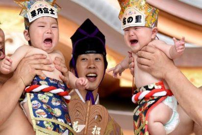 Naki Sumo: el festival de los bebés llorones