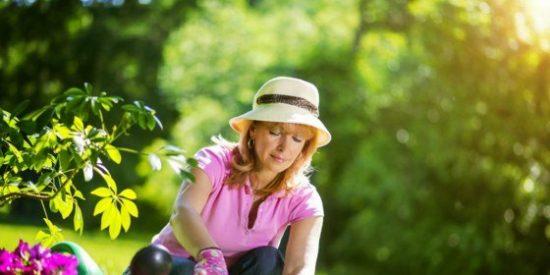 Ofertas en accesorios para jardín, hasta el 47% de descuento en Amazon