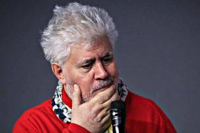Pedro Almodóvar lidera la revuelta de 272 autores contra el jefe de la SGAE