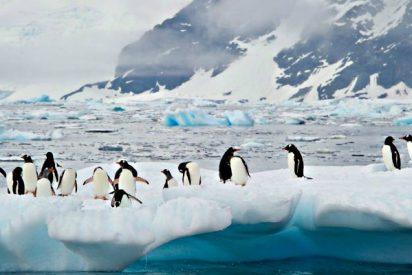 Descubren enormes cañones 'escondidos' en laAntártida