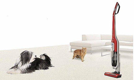 Bosch BCH6ZOOO Zoo'o ProAnimal - Aspirador escoba