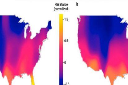 Gran preocupación tras descubrir que el calentamiento global está aumentando la resistencia de las bacterias a los antibióticos