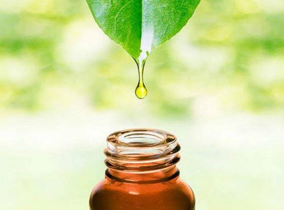 8 productos de cosmética natural