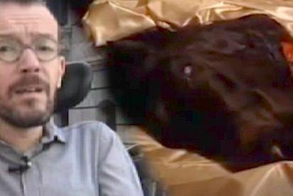 El coñazo de Echenique con la cabeza de caballo de 'El Padrino' aplicada al caso Cifuentes