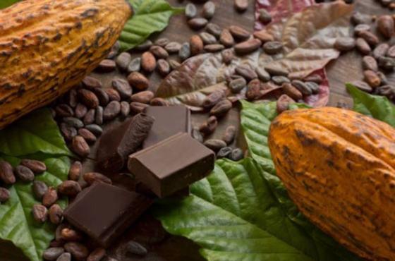 Mejores chocolates gourmet del mundo
