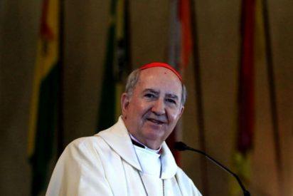 """Errázuriz, ya en Roma: """"Me pareció que el Papa deseaba que viniera"""""""