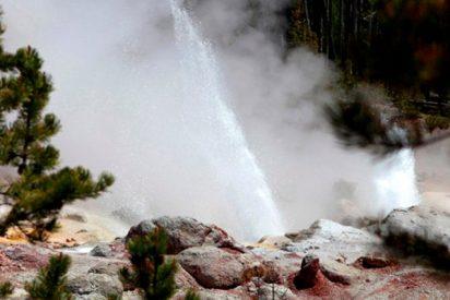 Los científicos no saben por qué el géiser activo más grande de Yellowstone ha entrado en erupción de nuevo