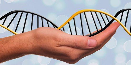 Inmortalidad: La normativa europea cuidará la protección de datos genéticos