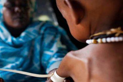 ¿Sabías que el 80% de los niños desnutridos de todo el mundo viven en sólo 20 países?