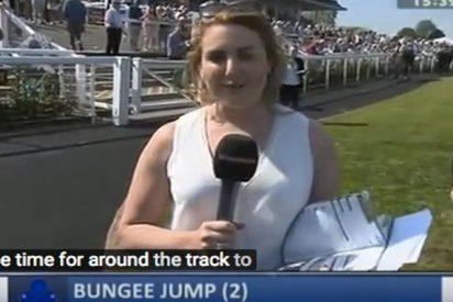 Esta reportera británica se pone en el camino de un caballo y le pasa esto…