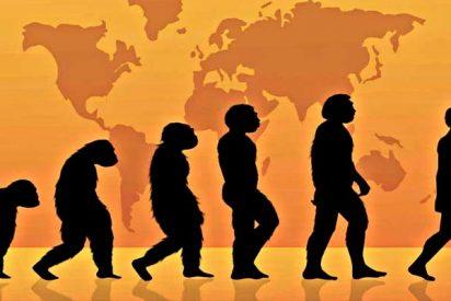 ¿Y si ahora resulta que el hombre no viene del mono?