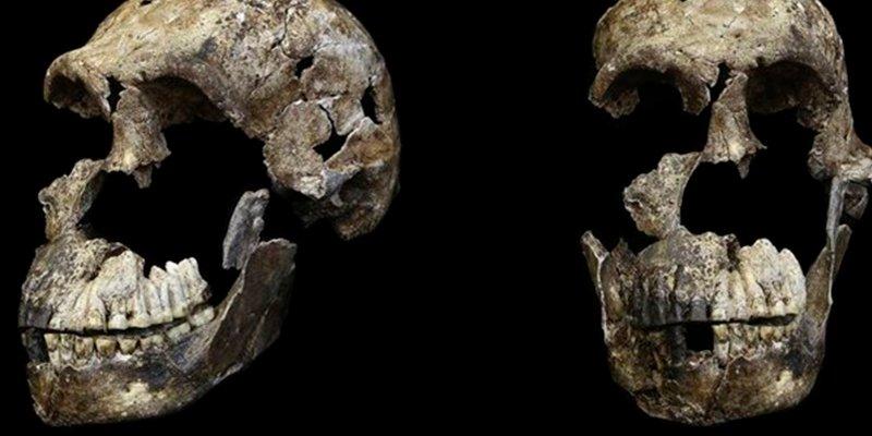 """¿Cambios en la evolución? El """"Homo naledi"""" sorprende a los científicos por su diminuto cerebro"""