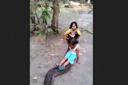 Estas dos niñas indonesias se lo pasan pipa a lomos de una agresiva pitón