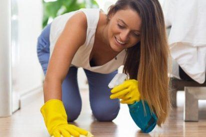 ¿Sabes de qué está formado el polvo de casa?