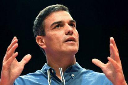 """El vídeo de los enchufes en la Junta que electrocuta a Pedro Sánchez: """"¡Golfos!"""""""