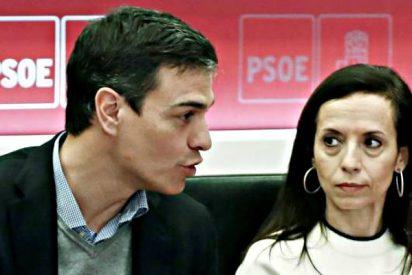 El sueldazo y el Audi Q5 de Beatriz Corredor, favorita de Pedro Sánchez, ponen patas arriba al PSOE
