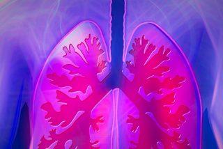 Longevidad: Un nuevo tipo de célula madre regenera tejido pulmonar