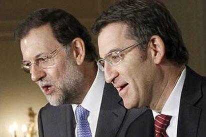 Alberto Núñez Feijóo se perfila como claro sucesor de Mariano Rajoy