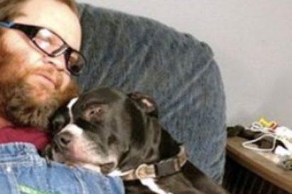El perro que dispara a su dueño y acaba llorando a su lado
