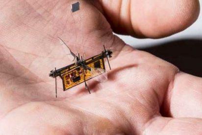 La era de los drones del tamaño de un insecto