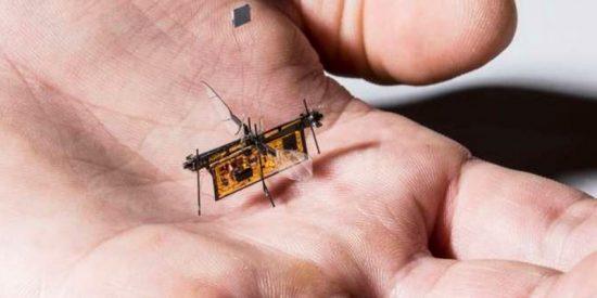 Robots: La era de los drones del tamaño de un insecto