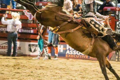 Este jinete muere pisoteado por un toro durante un torneo de rodeo en Brasil