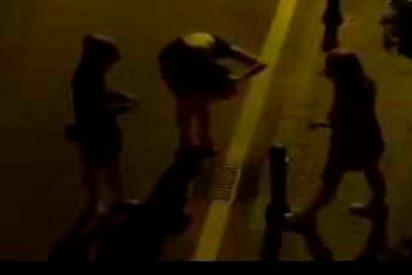 Esta tres turistas borrachas 'pelean' contra una maceta en Marbella
