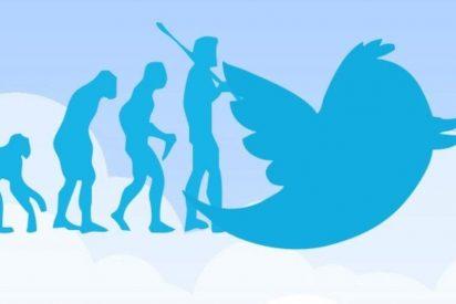 Descubren en Twitter pistas de una función para encriptar mensajes