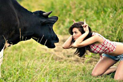 Tutorial: La economia es la leche